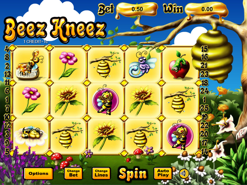 Beez Kneez Entry Screen
