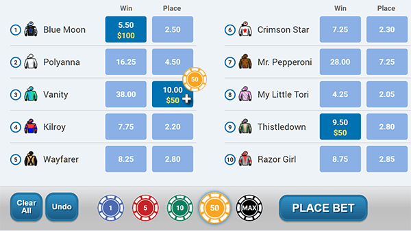 Virtual Horse Racing select a bet type and adjust the amoun.png